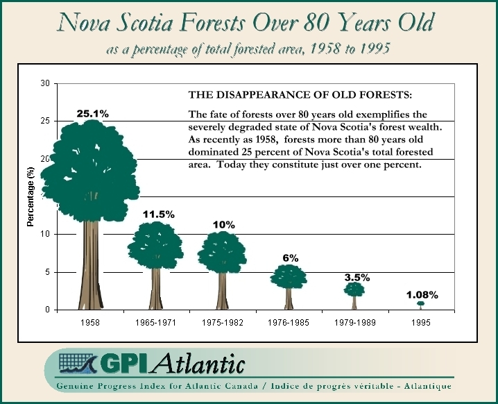 Nova Scotia Forests Over 80 Years Old